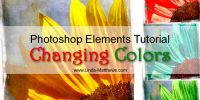 Photoshop Elements Tutorial: Changing Colors