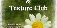 New! PhotoArt & Texture Club