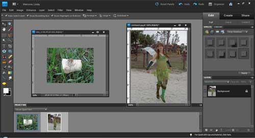 Photoshop Elements: Layer Masks
