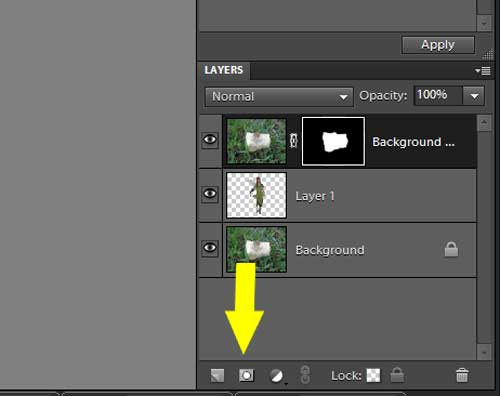 Photoshop Elements: Layer Masks