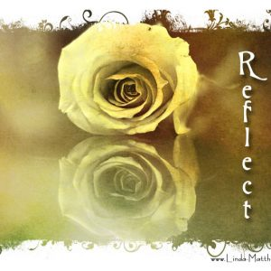 Not Quite Wordless Wednesday: Reflect