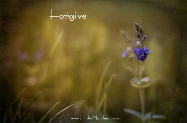 Not Quite Wordless Wednesday: Forgive