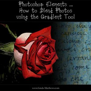 Photoshop Elements: How to Blend Photos using the Gradient Tool