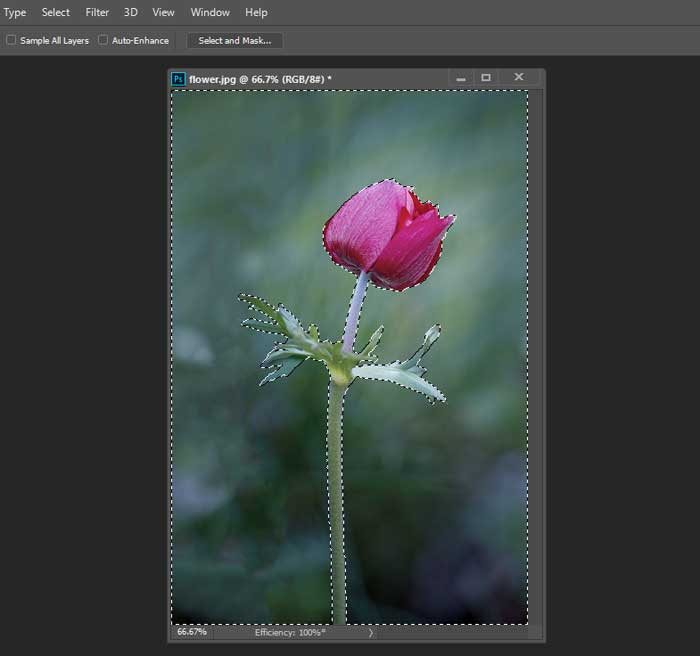 Easy Selective Coloring Effect using Photoshop