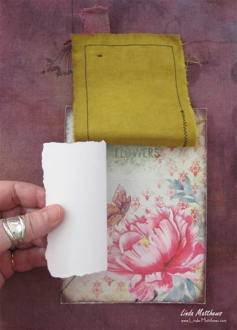 Nature Journal Page: Blossom