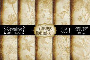 Vintage Botanicals – New Digital Paper Packs