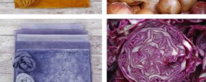 Explorations in Natural Dyeing using Fruit and Vegetables